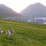 Norðoya Tjóðveldisfelag: Aðalfundur og veitsla