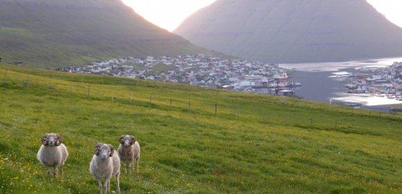 Norðoya Tjóðveldisfelag: Møguleikar og avbjóðingar